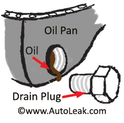 Drain Plug Oil Pan. Oilpan Leak. Oil Pan Gasket.