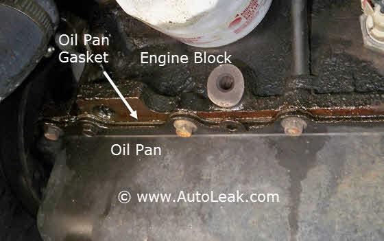 Oil Gasket Leak >> Oil Pan Gasket